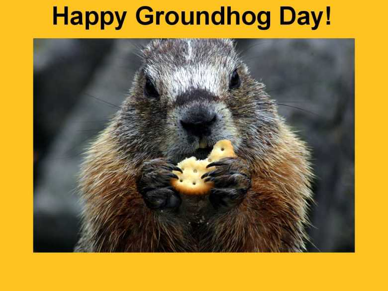 Groundhog_Day_Wallpapers